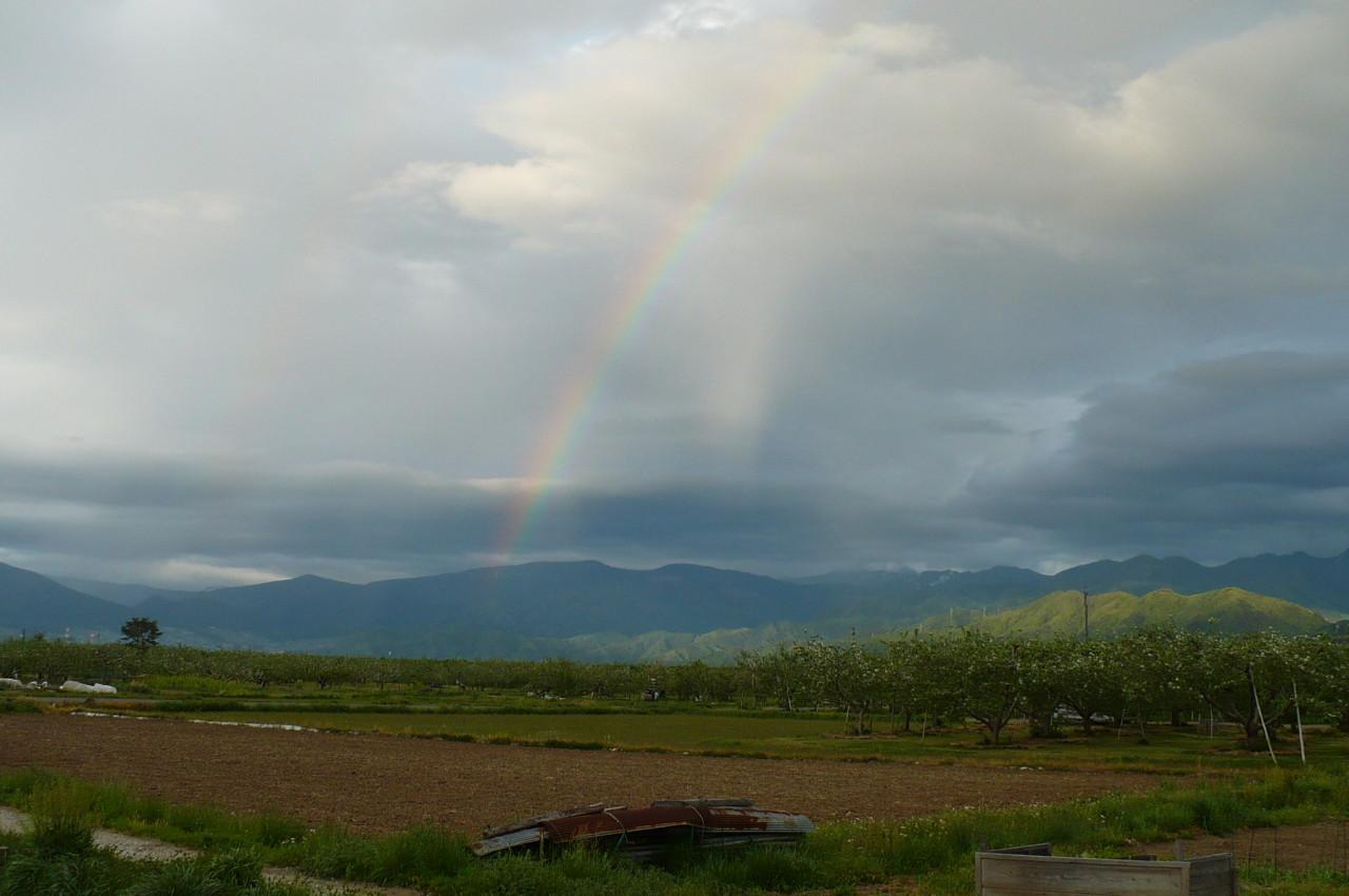 rainbow '15_02