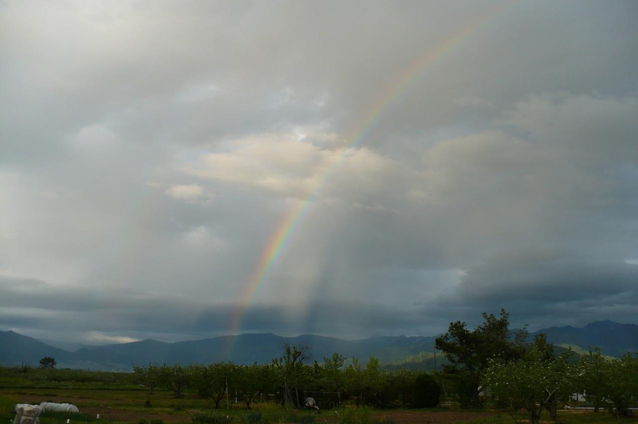 rainbow '15_03