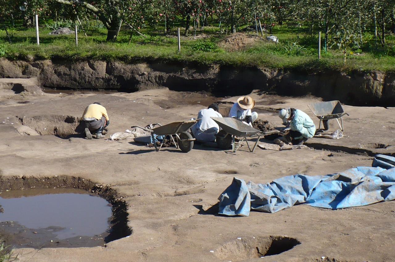 excavations_36