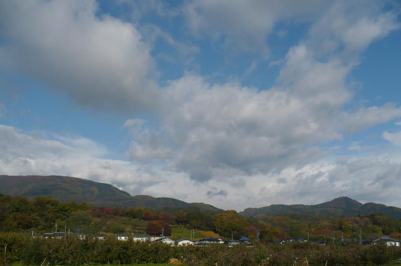 Late autumn '15_11