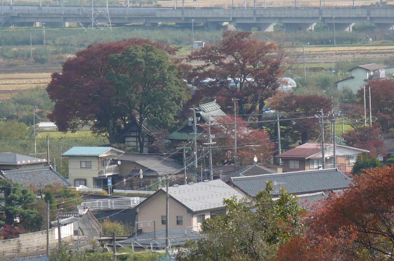 Late autumn '15_14