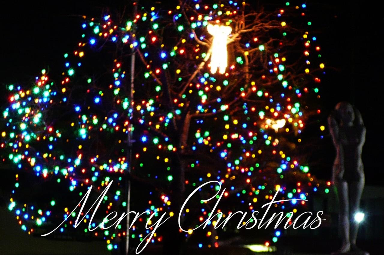 Christmas_'15_01