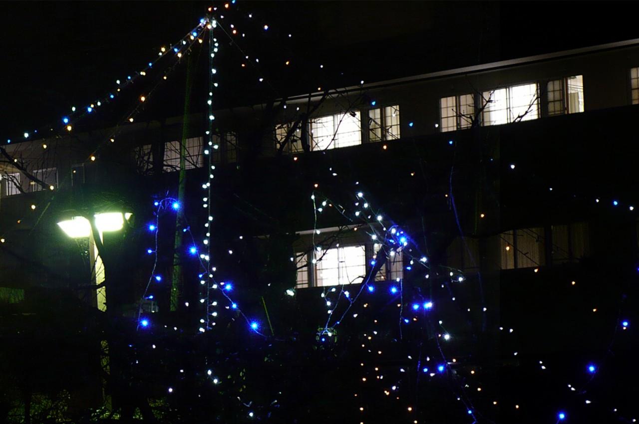 Christmas_'15_05