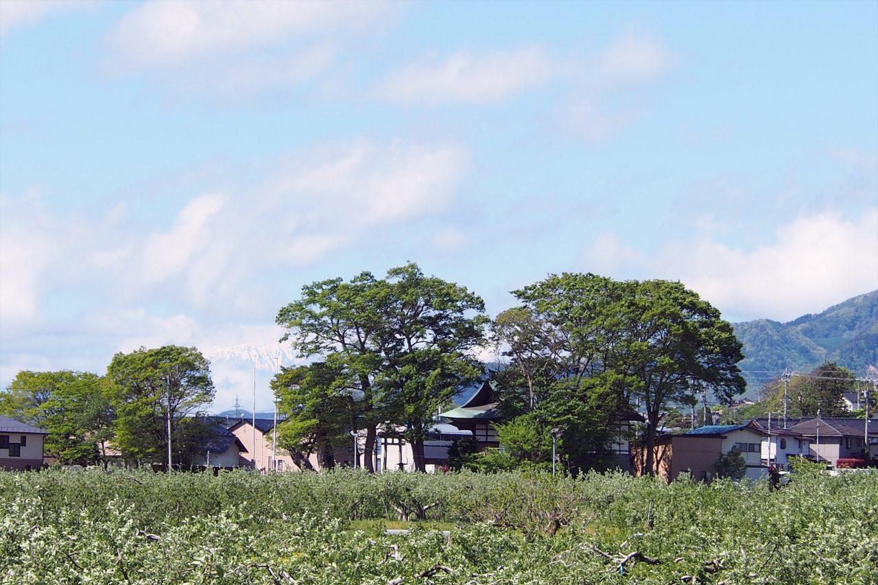 karasumachi_05