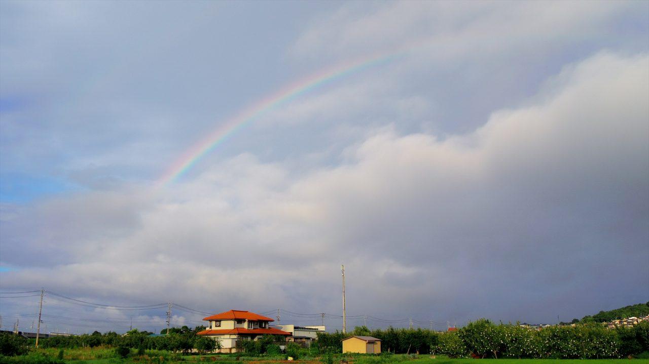 rainbow_16_01