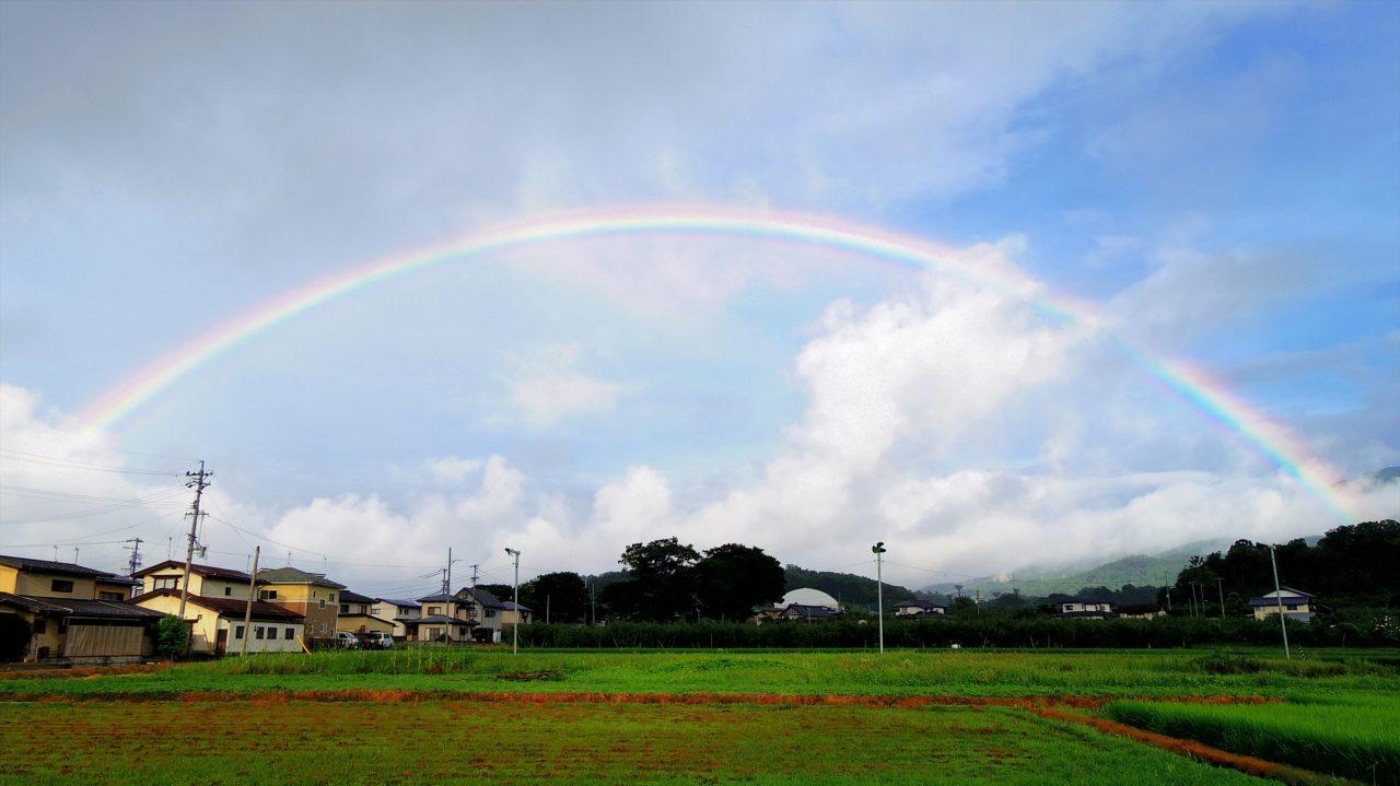 rainbow_16_08