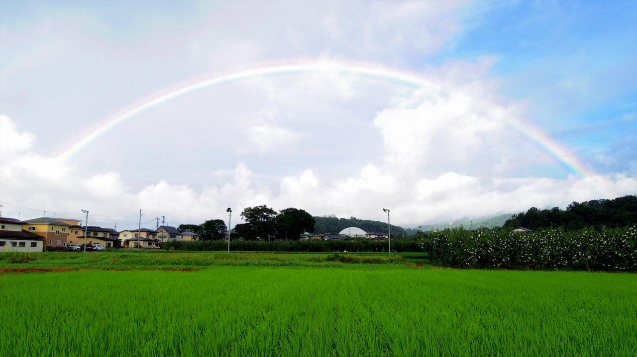 rainbow_16_10