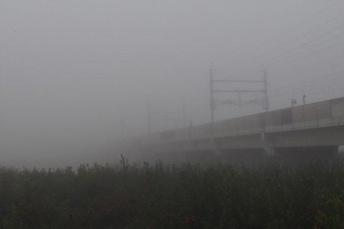 morning-fog_16