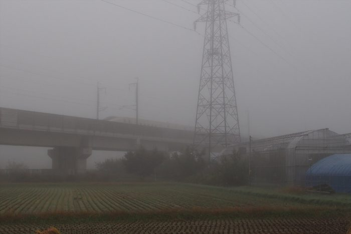 morning-fog_17