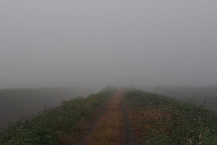 morning-fog_19