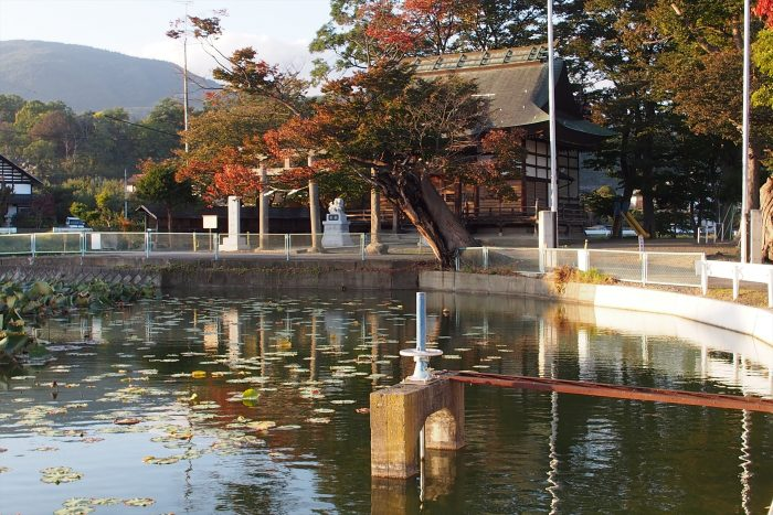 suwasya_autumn16_05