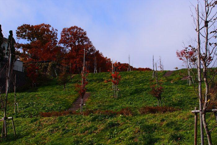 autumn-leaves_04