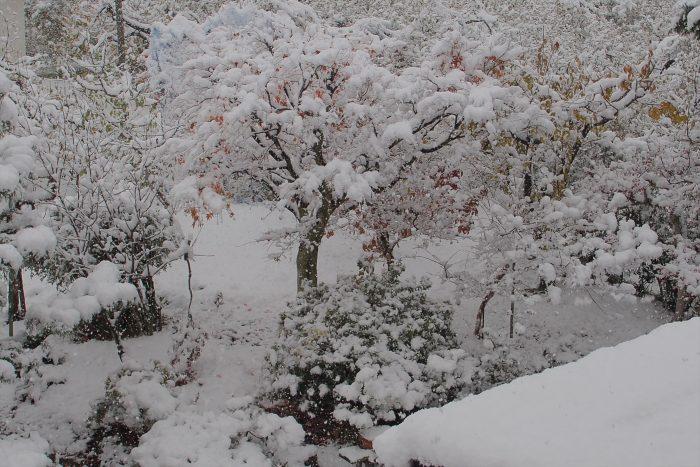 first-snow_03